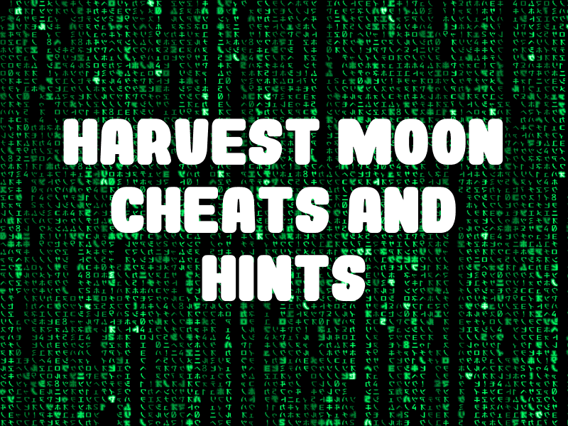 Harvest Moon Cheats and Hints for SNES